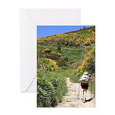 El Camino de Santiago de Compostela Greeting Cards