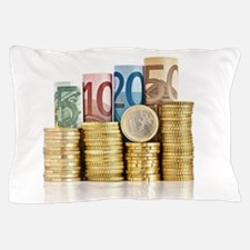 euro currency Pillow Case