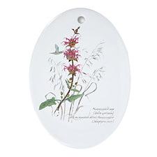 Hummingbird sage Ornament (Oval)
