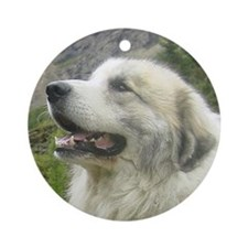 Great Pyrenees Ornament [rd] Tambel
