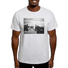 Funny Veterans day T-Shirt
