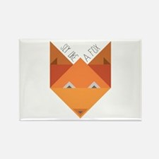 Sly Fox Magnets