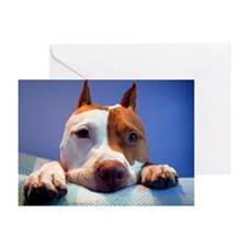 Hmmm Greeting Cards (Pk of 10)