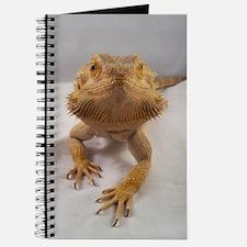 Rebney on white Journal