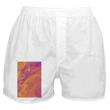 Inspired by Japan Boxer Shorts