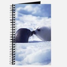Harp Seal Journal