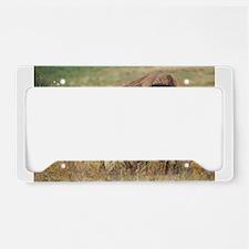 american bison License Plate Holder