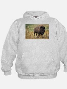 american bison Hoodie