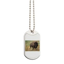 american bison Dog Tags