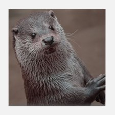 Sweet young Otter Tile Coaster