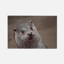 Sweet young Otter Magnets