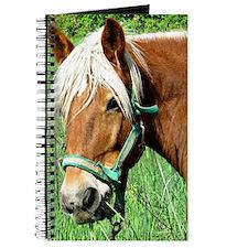 Goldie Suffolk Draft Horse Journal