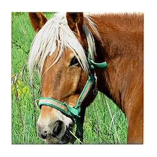 Goldie Suffolk Draft Horse Tile Coaster