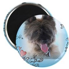 "Funny Cairn terriers 2.25"" Magnet (10 pack)"