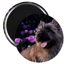 "Unique Fiona 2.25"" Magnet (10 pack)"