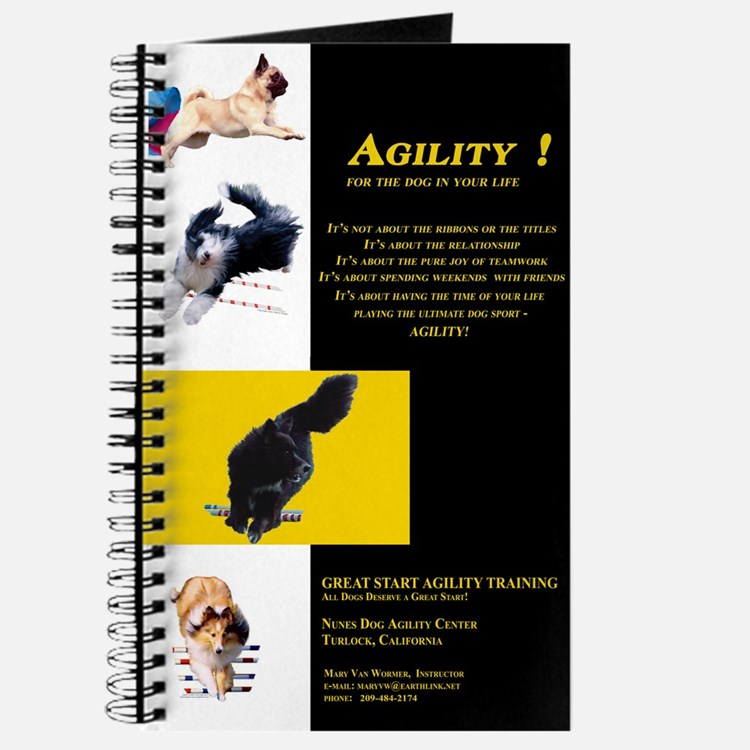 Great Start Agility Journal