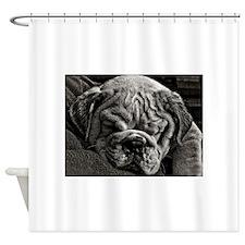 English Bulldog Puppy Art Shower Curtain