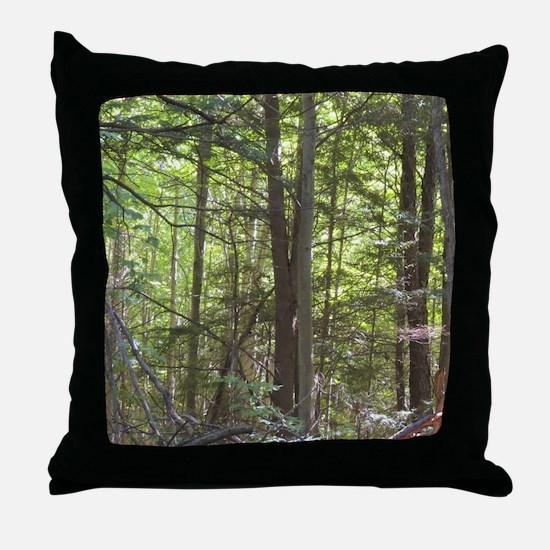 Scenery Of Trees Throw Pillow