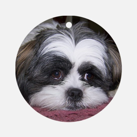 Shih Tzu Dog Photo Image Ornament (Round)