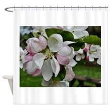 """APPLE BLOSSOMS"" Shower Curtain"