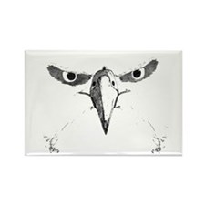 Eagle Eyes Rectangle Magnet (10 pack)