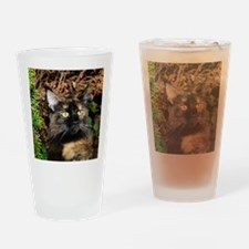 Maine Coon Cat Alissa Drinking Glass