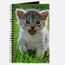 Baby Cat Journal