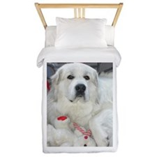 great pyrenees with teddy bear Twin Duvet