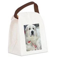 great pyrenees with teddy bear Canvas Lunch Bag