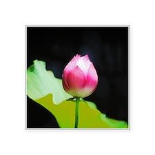 Pink Lotus Flower Sticker