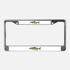 Lake Trout Namaycush v2 License Plate Frame