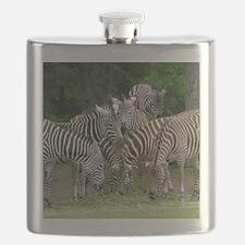 Zebra_2014_1101 Flask