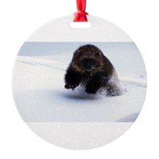 A Wolverine Ornament