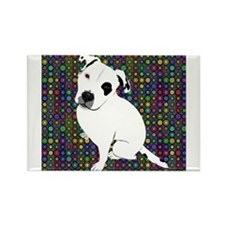 Cute white pit Bull circle pattern Magnets