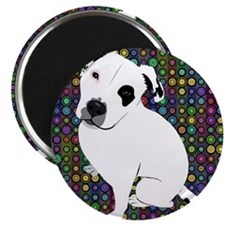 Cute white pit Bull circle pattern Magnets