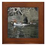 Baby Ducklings Framed Tile