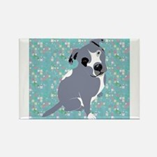 Cute grey pit Bull square pattern Magnets