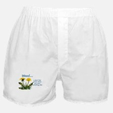Dandelions Weed Boxer Shorts