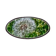 Dandelion 1 Patches
