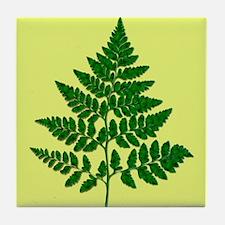 Fern leaf Tile Coaster