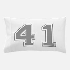 41 Pillow Case