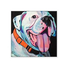 "Cute Pop art pitbull Square Sticker 3"" x 3"""