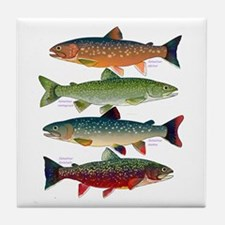 4 Char fish Tile Coaster