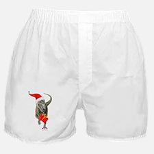 Santasaurus Boxer Shorts