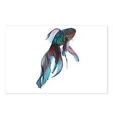 Fancy Betta Fish Postcards (Package of 8)