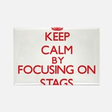 Keep Calm by focusing on Stags Magnets