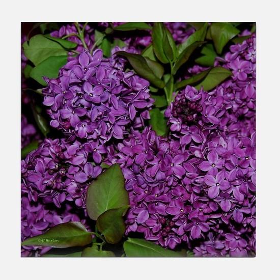 Lilac Tile Coaster