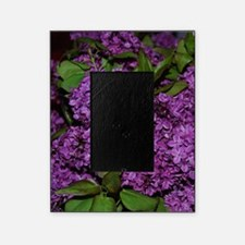 Lilac Picture Frame