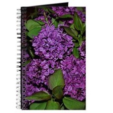 Lilac Journal