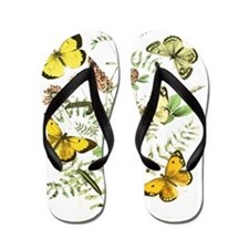 French Butterflies Flip Flops